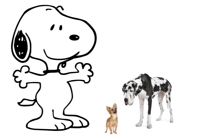 Snoopy standing next to a Great Dane and a Chihuahua